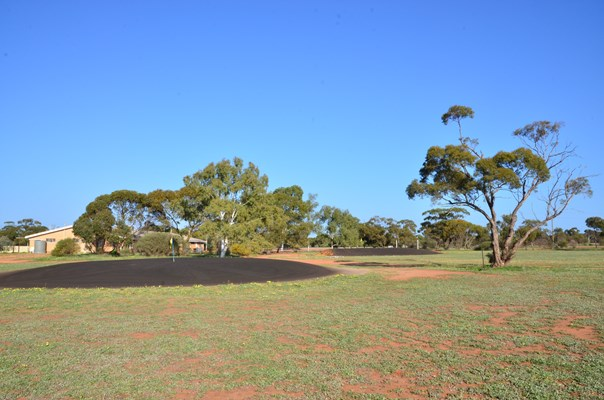 Golf Club - Morawa1014